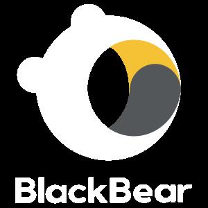 BlackBear Security